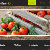 template-criador-de-sites-godaddy-02