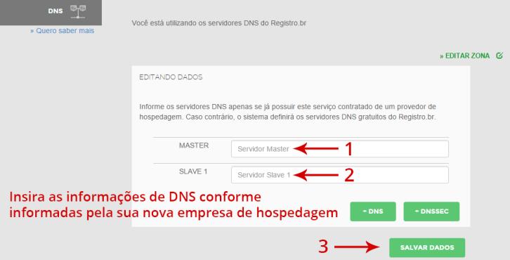 Insira as informações de DNS conforme informadas pelo seu provedor de hospedagem