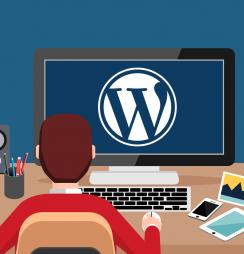 Dicas site WordPress profissional