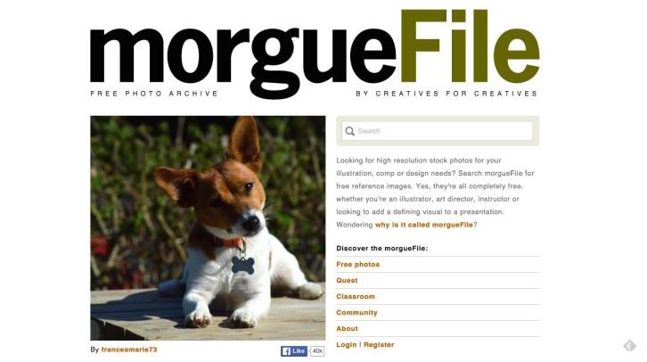 banco de imagens Morguefile