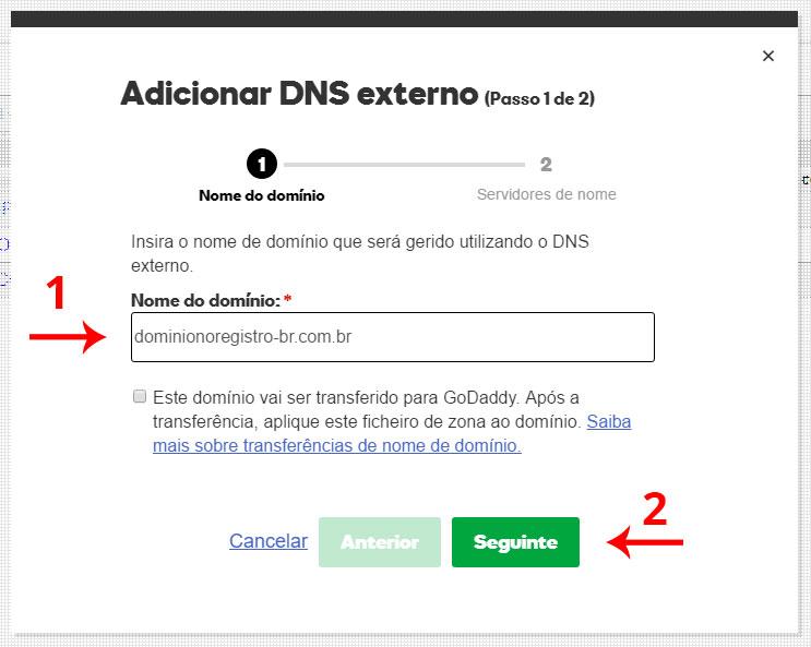 Adicionar DNS externo - passo 2 - painel de controle GoDaddy