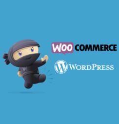 woocommerce-destaque