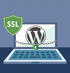 Configurar SSL no WordPress