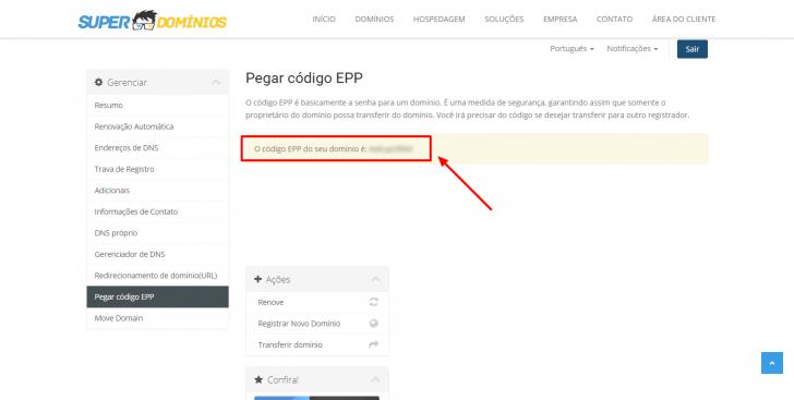 Código EPP visível no painel da Super Domínios
