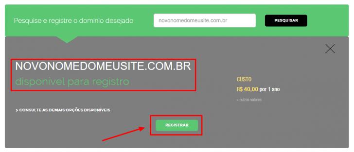 passo 2 - registro.br - consulta registro