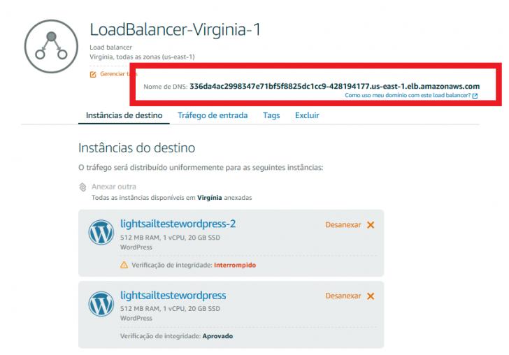 Endereço DNS do load balancer para acesso externo.