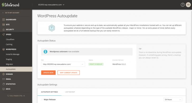 Área de gerenciamento de atualizações do WordPress