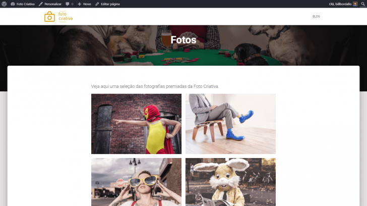 Página de fotos com a galeria publicada