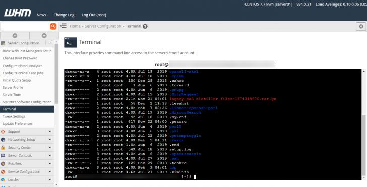Um terminal com acesso root está disponível dentro do WHM