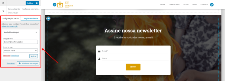 Editor visual do WordPress, com a área de inserção de newsletter selecionada